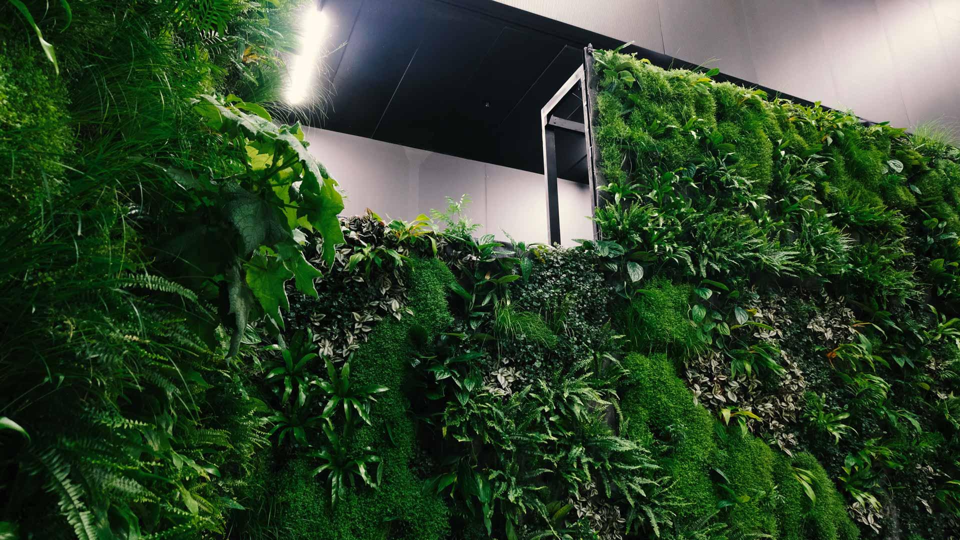 Swissbau 2020 - grösste, modulare und mobile Pflanzenwand